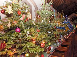 Where to dispose of Christmas trees this year
