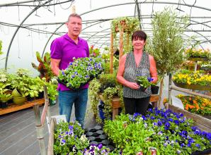 New plant nursery opens in Knowl Hill
