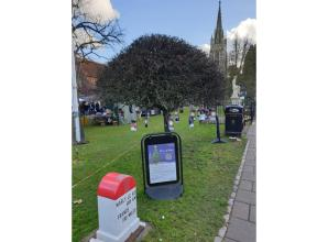 Marlow 'Tree of Hope' blossoms to raise thousands for charity