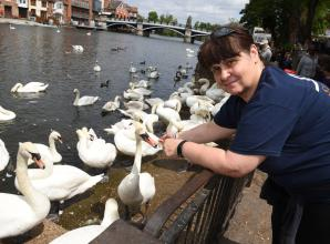 Swan Support seeks donations for new centre at Bray Lake