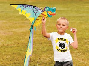 Zoom-made kites will fly into fame at Norden Farm kite festival