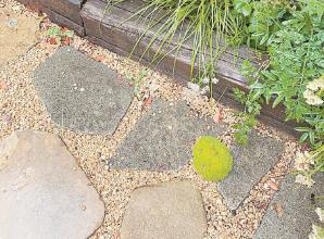 Makeover your garden with rubbish with tips from top designer